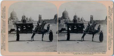 "<bdi class=""metadata-value"">A Ship of the Desert passing the Tombs of the Khalifs, Cairo, Egypt.</bdi>"